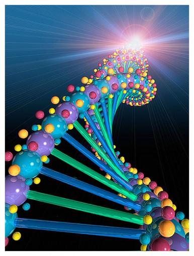 ADN COSMICO sanacion