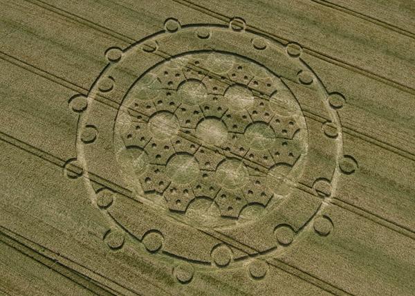 32-The-Ridgeway-Wiltshire-15-06-08-Barley-OH Enviado telepaticamente por el Mago Lunar Blanco
