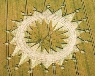 The Galactic Butterfly Hunab Ku Crop Circle Phase 2 Cannings Cross UK 2009
