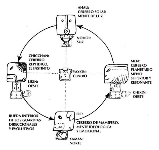 4 guardianes evolutivos -factor maya
