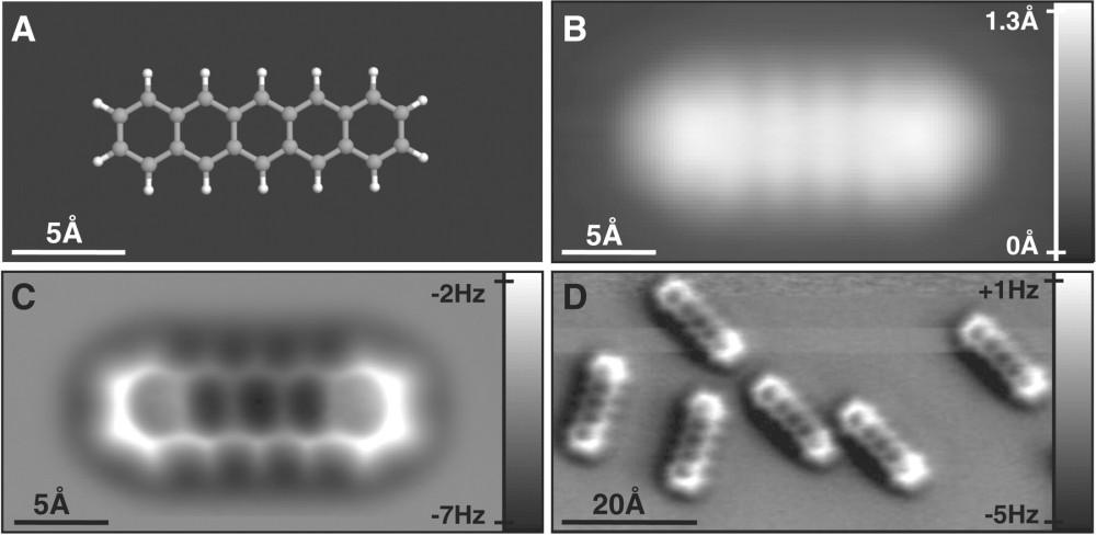 molecula-afm1.jpg