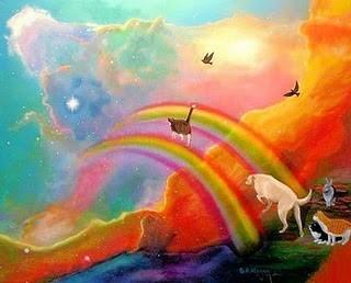 puente-del-arco-iris