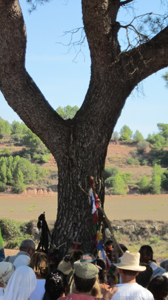 8 circulo árbol sagrado