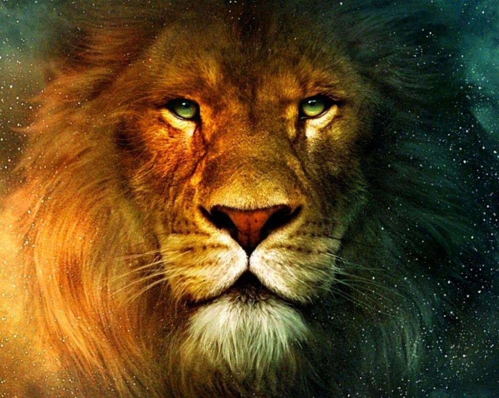 leon-cosmico-1024x819