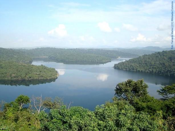 Parque-Estadual-do-Rio-Doce-Fernando-Marino-CC-Wikimedia-Commons-614x460
