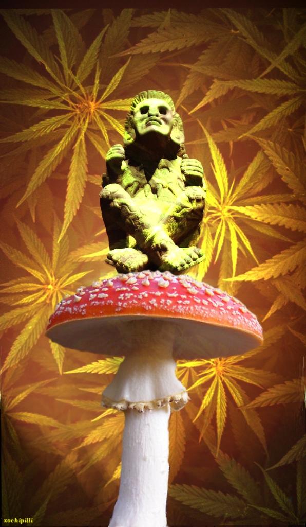 Xochipilli cannabis hongo plantas mestras kin 138