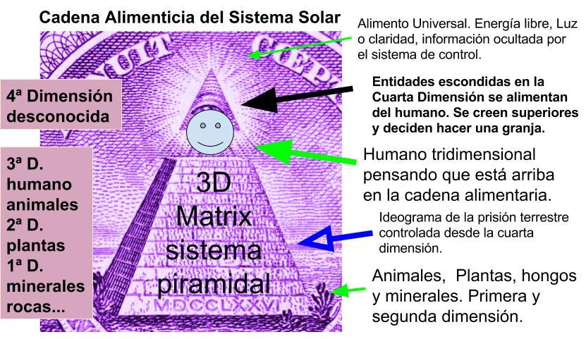 cadena alimentaria del sistema solar (1)