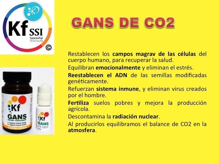 GANS CO2