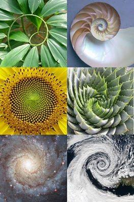 espiral huracan galaxia