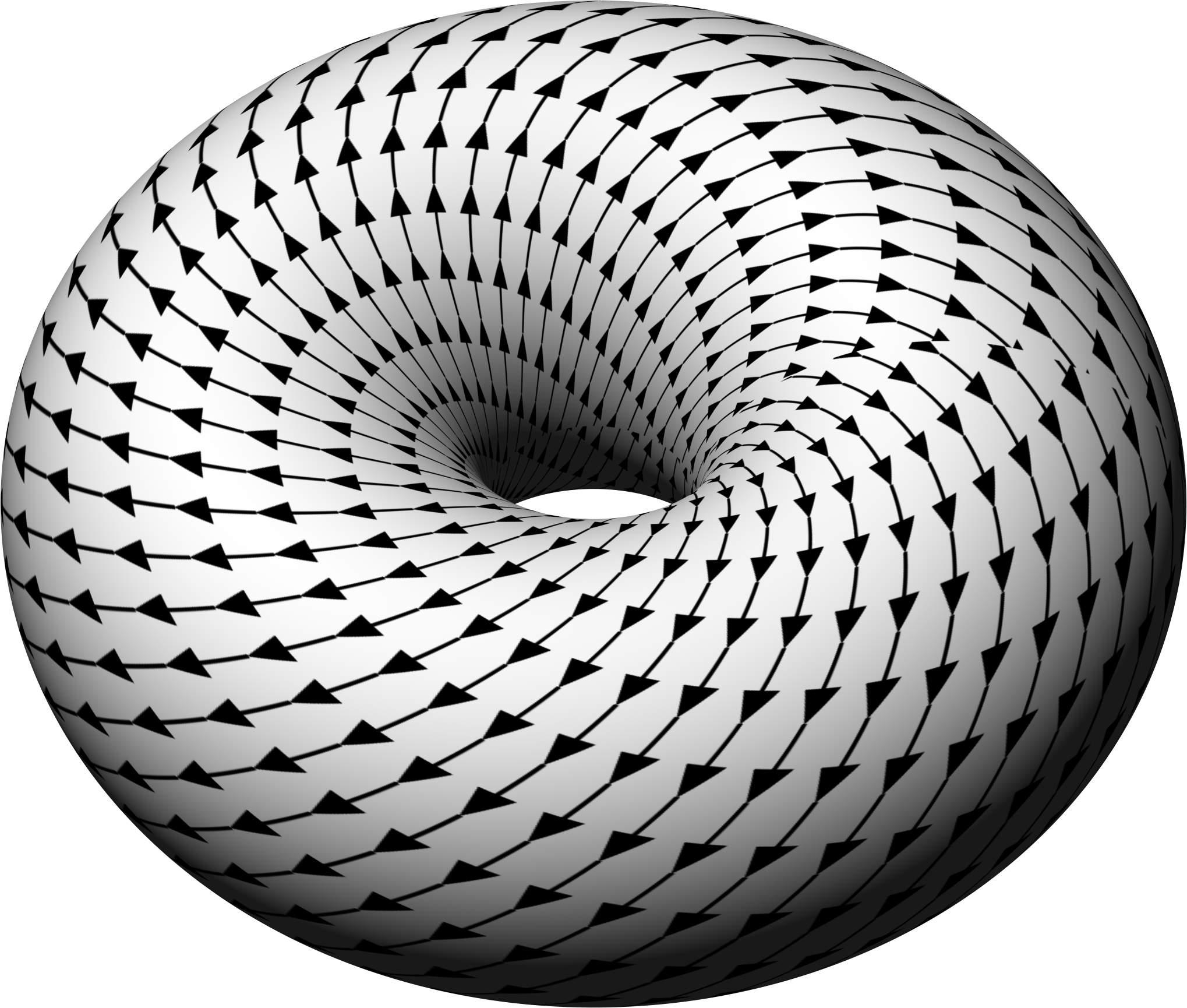 https://upload.wikimedia.org/wikipedia/commons/b/b4/Torus_vectors_oblique.jpg